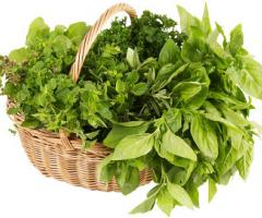 wicker basket full of fresh herbs