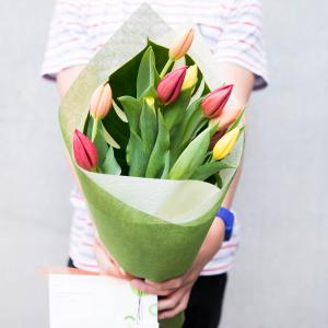 A boy holding a bright mixed bunch of Tulips
